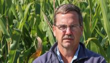 A man stands in a corn field looking directly at the camera.