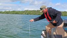 Lake monitor checks water clarity with Secchi disk