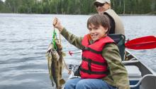 A smiling boy sitting in a boat on a lake holding up a string of walleye