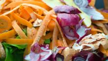 Carrot peelings, onion peels, broken egg shells, and other food waste.