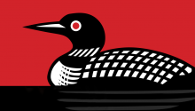 Black and white loon graphic on red background