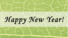Happy new year over a grean leaf