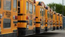 School buses in a row