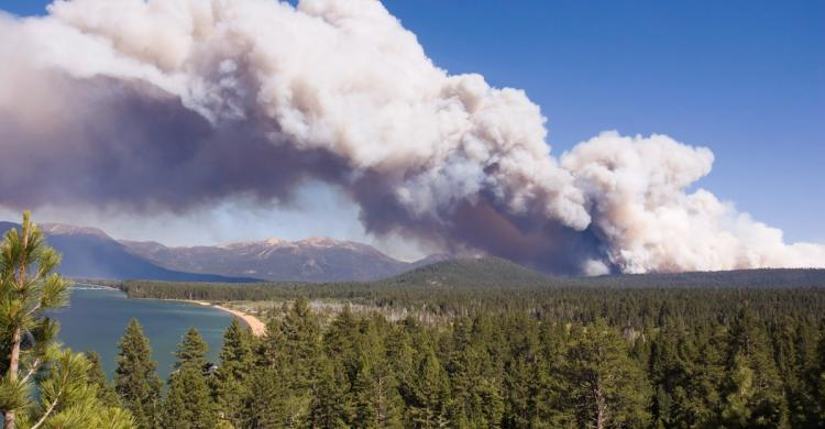 Heavy plume of white smoke rises from pine covered mountains in distance