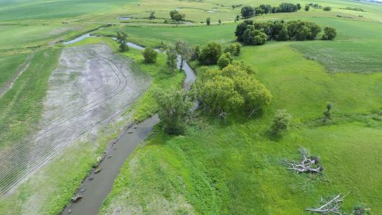 An aerial view of a small stream running through grassy areas next to farm fields
