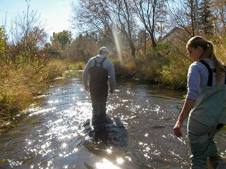A man and a woman in chest waders walk in a stream looking down at the water on a bright sunny autumn day.