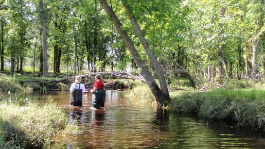 Three people in full waders stand in a brown river in the middle of the woods.