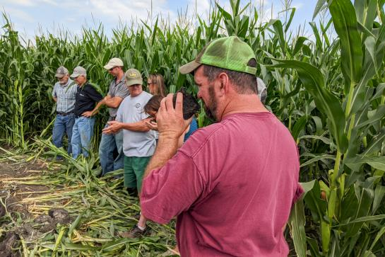 A group of people stand in a clearing in a corn field, a man in the foreground wearing a red t-shirt and lime green cap smells a large clump of soil.