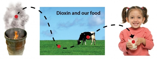 Dioxin from backyard burning of trash can get into our food.