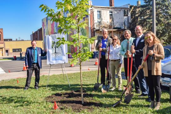 A group of men and women with shovels stand around a newly planted tree.