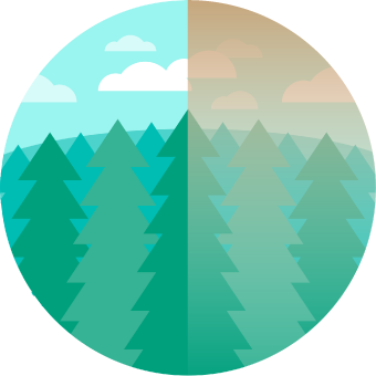 Icon showing a forest with half of the view obscured by hazy air