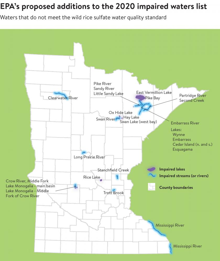 Impaired lakes include Little Sandy, Swan, East Vermillion, Embarrass, Wynn, Cedar Island, Esquagama, and Mongolia. Impaired rivers include Clearwater, Pike, Long Prairie and Crow River. See the EPA Wild Rice waters map and list PDF for the full list.