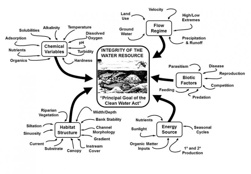 Five major factors that determine the integrity of aquatic resources