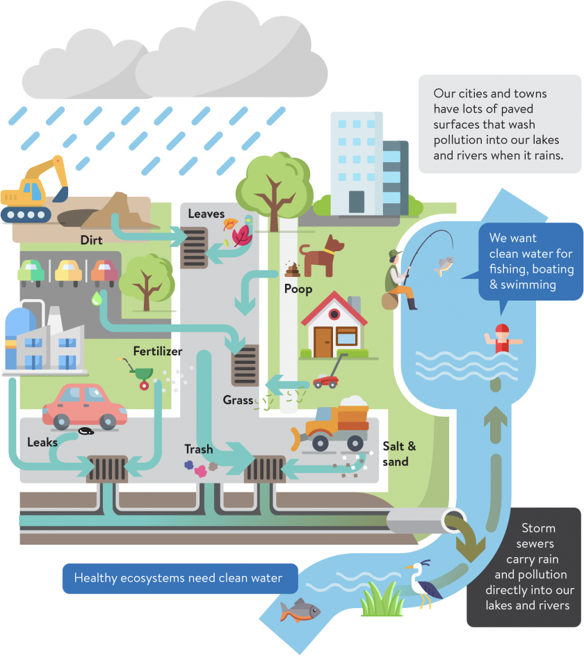 Storm drains and storm sewers carry water away from paved surfaces, but they also carry pollution. Dirt, fertilizer, leaves, dog poop, cut grass, salt and sand, car leaks, and trash also wash down storm drains directly into our lakes and rivers.