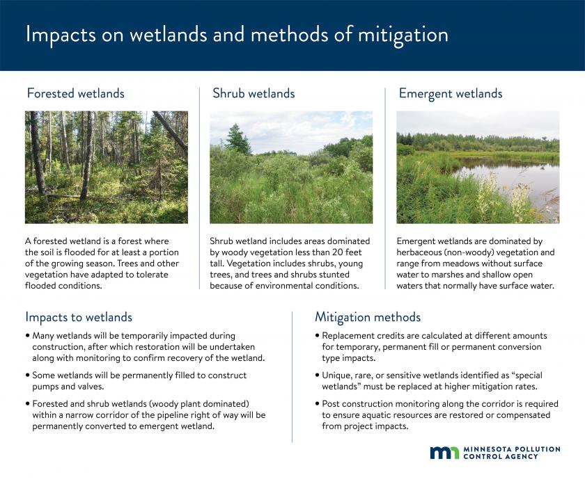 Many wetlands will be temporarily impacted during construction, after which restoration will be undertaken with monitoring to confirm recovery of the wetland.