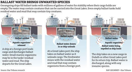 Ballast water brings unwanted species