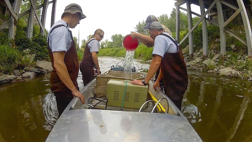 MPCA monitoring staff conducting fish sampling