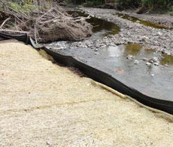 BMPs protecting surface waters include mulch and silt fences.