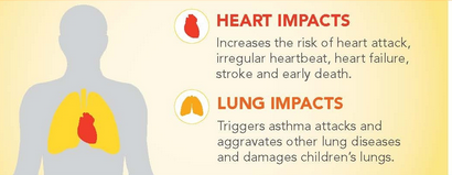 graphic of impact of air pollution on heart and lungs