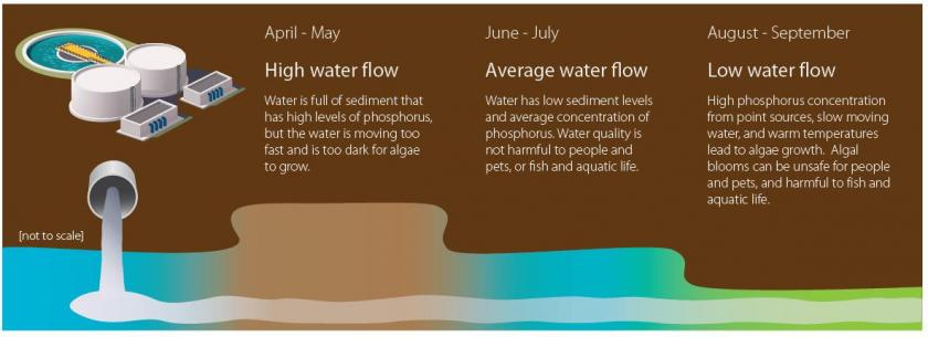 Water flow level graphic