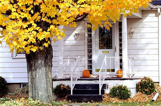 house-and-maple-tree-in-autumn