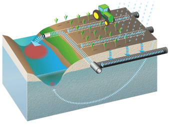 Illustration shows how nitrates flow through drain tiles in fields into water