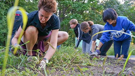 Minnesota GreenCorps members planting