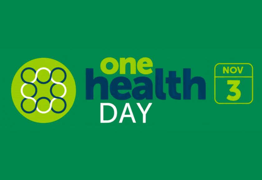 Image result for one health day