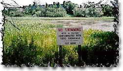"""No swimming"" sign posted at Superfund site"