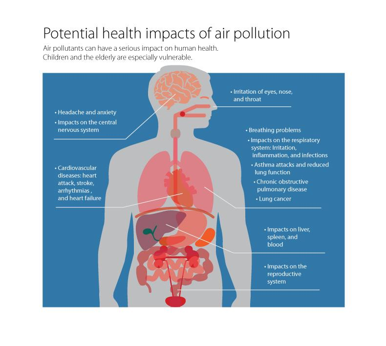 air pollution a significant cause of