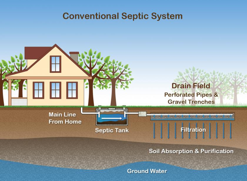 Illustration of conventional septic system