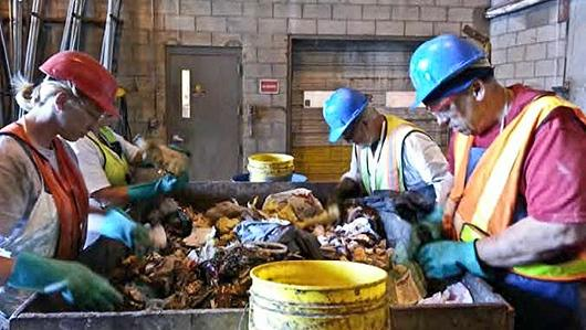 waste-study-workers-sort-garbage-530