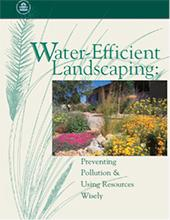 water-efficient-landscaping-guide