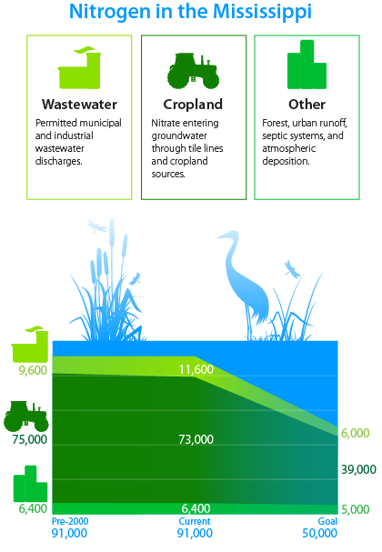 water-quality-infographic-nitrogen