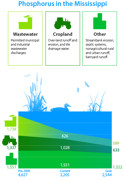 water-quality-infographic-phosphorus