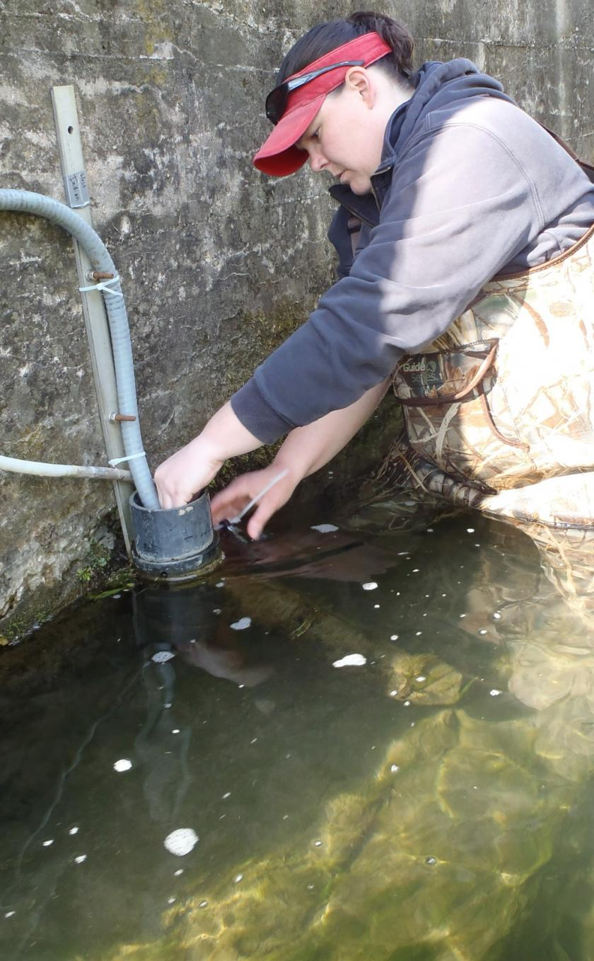 Installing a sensor in the river