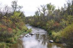 High Island Creek in the Lower Minnesota River watershed