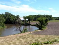 A field along the Minnesota River in the Mankato area lacks a wide enough buffer strip of deep-rooted plants and trees to help hold soil in place and filter out pollutants.