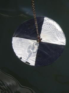 A Secchi disk submerged in water