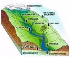 Illustration showing contour of land directing flow of water