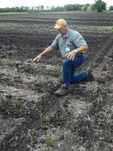 Photo: David Legvold turned to on-farm research for answers on how to apply fertilizer without hurting downstream waters.