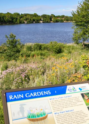 An informational sign overlooks a rain garden on the shoreline of a lake.