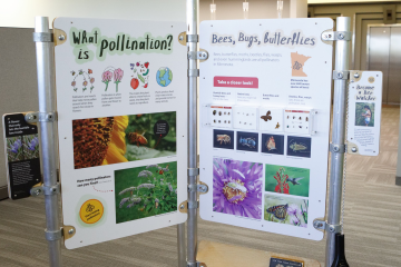 EQB and MPCA created a portable interactive library exhibit on pollinators