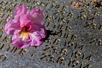 Grave marker with flower on it