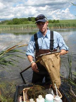 Summer Intern Cody Dieterle empties a dipnet invertebrate sample into a floating processing station at a Mahnomen County depressional wetland. Invertebrates are picked out of the aquatic vegetation in the tray, preserved on site, and sent to a lab for identification.